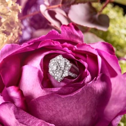 PIAGET ROSE系列女士钻石戒指